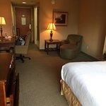 Foto de Holiday Inn Hotel & Suites Ann Arbor Univ. Michigan Area