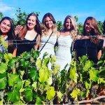 Fun in the vineyards!