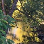 Rivière aux Brochets près du gite