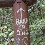 صورة فوتوغرافية لـ Mill Creek Falls