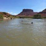 Swimming in the Colorado
