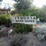 Sequoia River Dance B&B照片