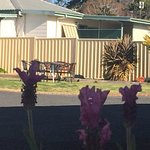 Glen Innes Motel Photo