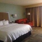 聖路易斯機場希爾頓恆庭酒店照片