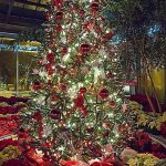 Yuletide tree decorated for Christmas at Garfield