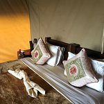 Dunia Camp, Asilia Africa Foto
