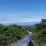 Foto de Coast Guard Beach