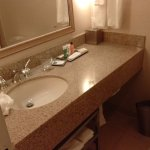 Bathroom Is Adequate But Toilet Is Extremely Low/Small