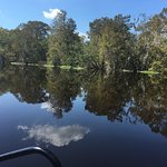 Photo of Wild Bill's Airboat Tours