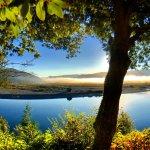 Foto de Rogue River Lodge at Snag Patch