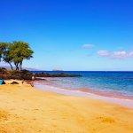 Photo of HA Baldwin Beach Park