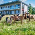 Hotel Camp Reinsehlen Foto