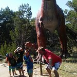Dinosaur Valley State Park Photo