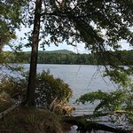Lake Tillery as seen from Fall Mountain Trail