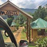 Photo de Gorilla Safari Lodge
