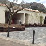 Nieuwe aanleg bestrating, bomen en struiken, ook diverse palmbomen geplant bij de staanplaatsen
