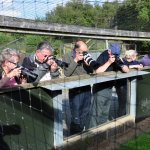 Our photographic group
