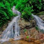 唐沢の滝:滝壺から撮影