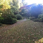 Photo of Johnston Gardens