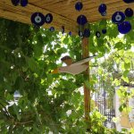 Marmara Guesthouse Foto