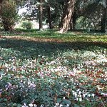 Le parc de la Heraudiere à l'automne