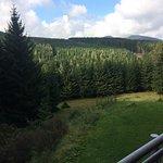 Photo de Brockenblick Ferienpark