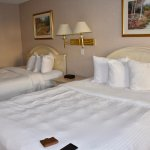 Foto Travelodge Niagara Falls Hotel by the Falls