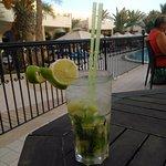 Green Palm Foto