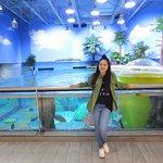 Jenk's Aquarium