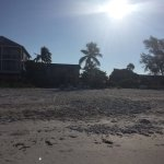 Photo of Anna Maria Island Inn