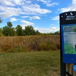 Stroll along the trails of the Interpretive Wetlands.
