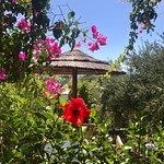 Foto di Kavos Boutique Hotel Naxos