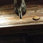 Barcelona bar at Reston - a bull head