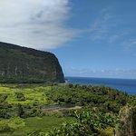 Waipi'o Valley, looking back towards the ocean