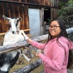 Our daughter loved feeding the goats!