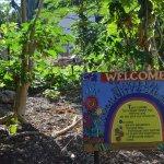 Snake bean community garden sign