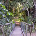 bridge to green grass
