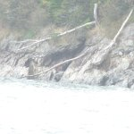 A barely visible cave at the far end of Jasper Beach