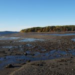 Mud Flats exposed at Low Tide