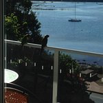 A couple of visitors on the balcony