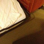 Embassy Suites by Hilton Detroit - Troy/Auburn Hills Foto