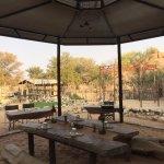 Photo of Madisa Camp