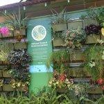 Photo of National Tropical Botanical Garden