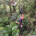 The kids loved being able to zip upside down!