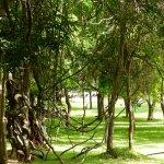 Amaya Lake Foto