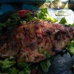 grilled fish, yammi