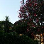 Hotel Danila Foto