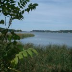 Nearby Irondequoit bay is less than two minutes drive from Avalon.  Relaxation, fishing and more