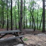 Photo de Julian Price Park Campground