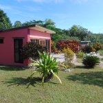 Photo de GumboLimbo Jungle Resort